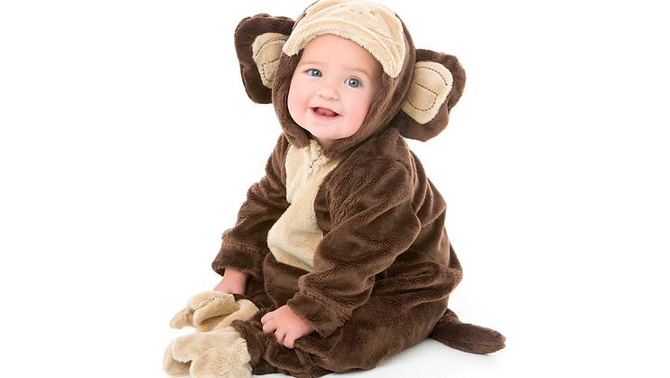 What will your 2016 Monkey baby be like?