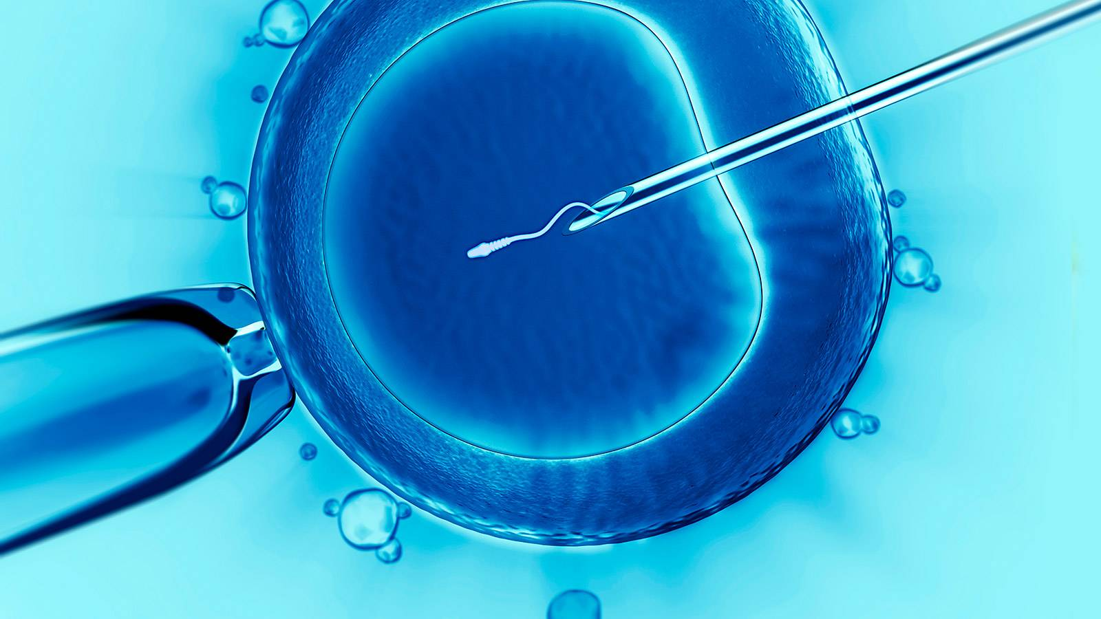 Facts about egg and sperm donation in Singapore