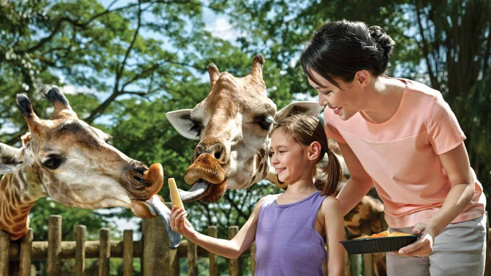 Tots--5-awesome-outdoor-experiences-your-tot-will-enjoy-zoo
