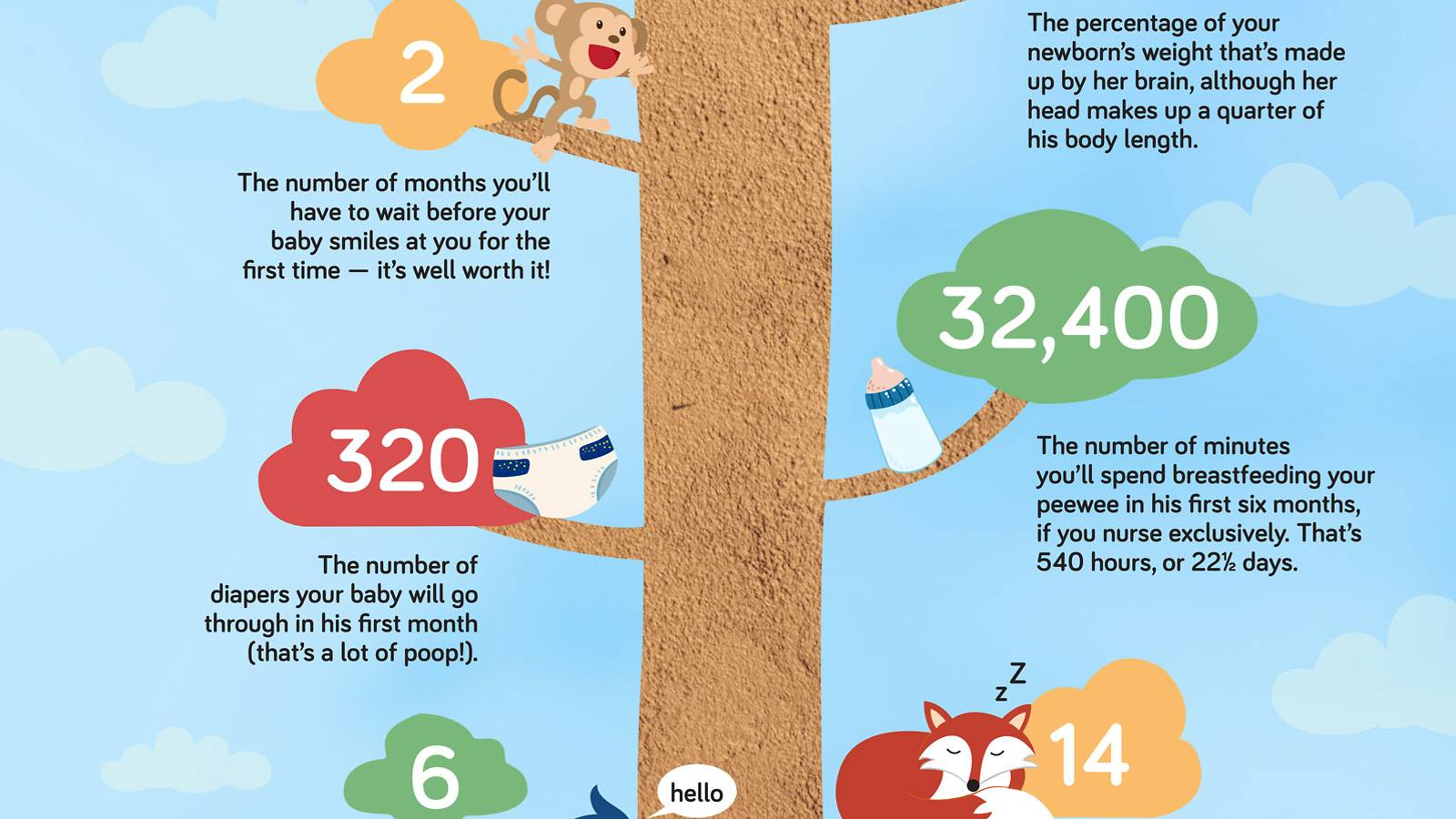 Babies--Know-your-baby's-progress---in-numbers-3