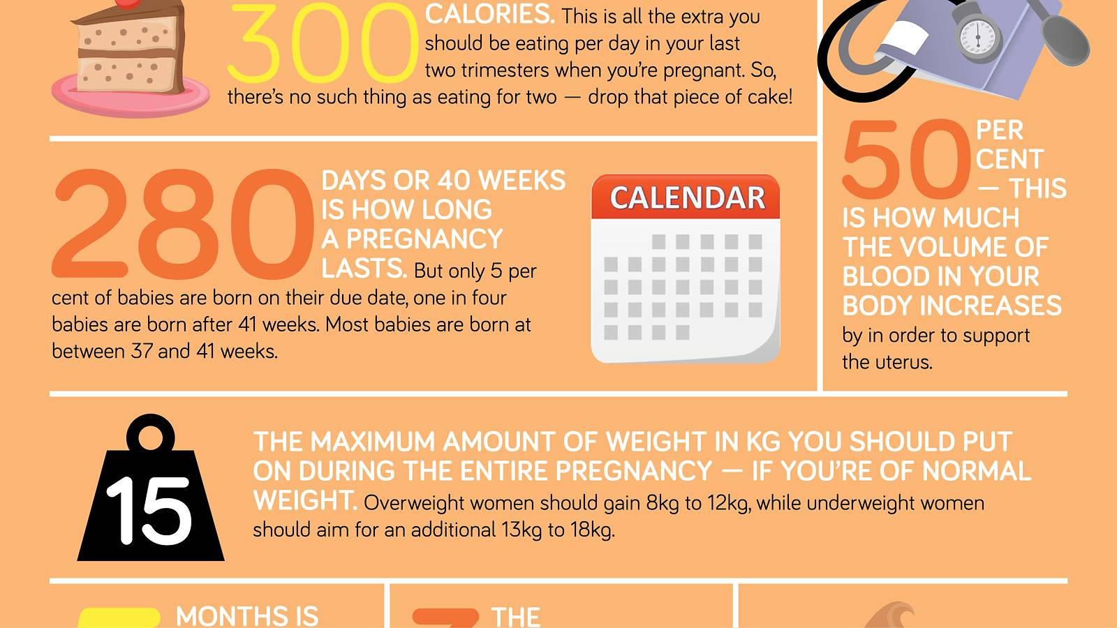Keep track of your pregnancy's progress ― in numbers!