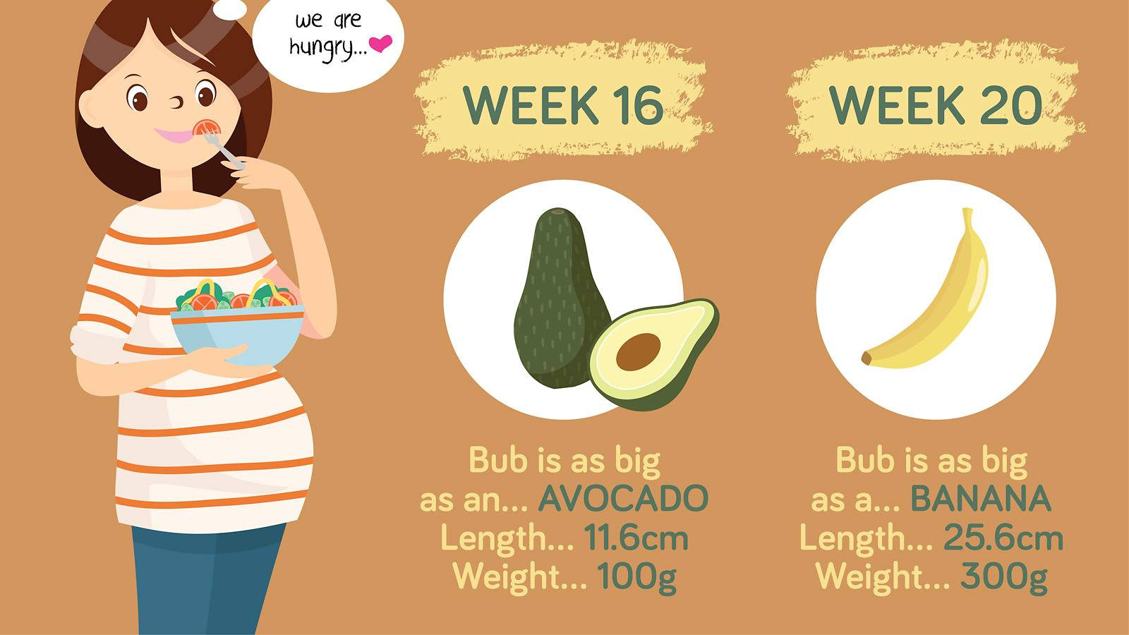 Pregnancy- Baby growth chart How big is your baby this week  [Infographic]-3