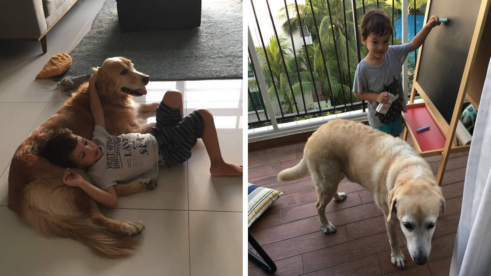 Tots-MUM-SAYS-Having-dogs-has-taught-my-kids-empathy-3