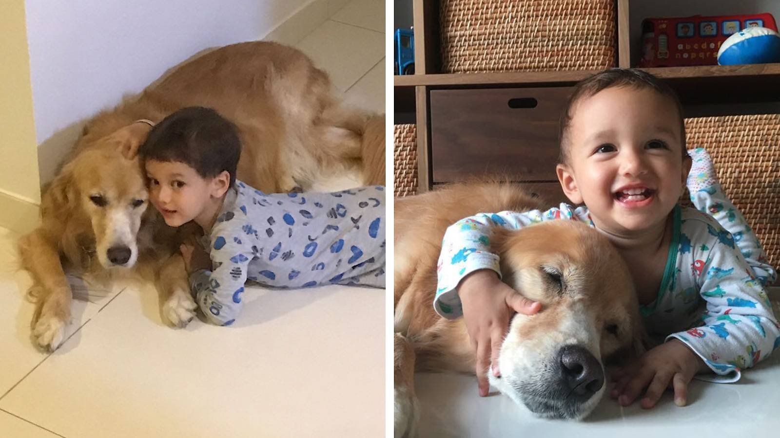 Tots-MUM-SAYS-Having-dogs-has-taught-my-kids-empathy-2