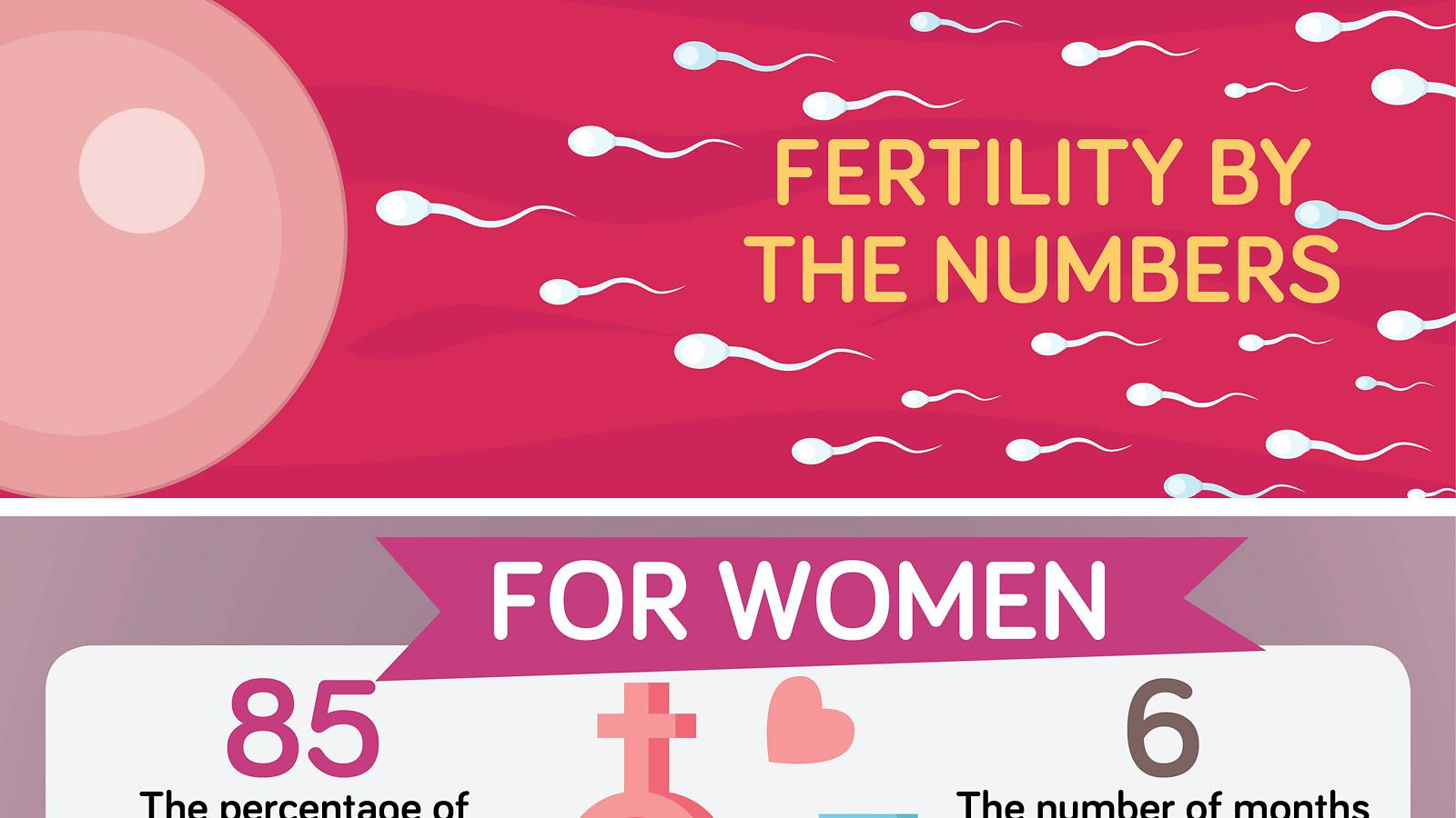 Conceiving-Your-fertility-by-the-numbers-infographics-1