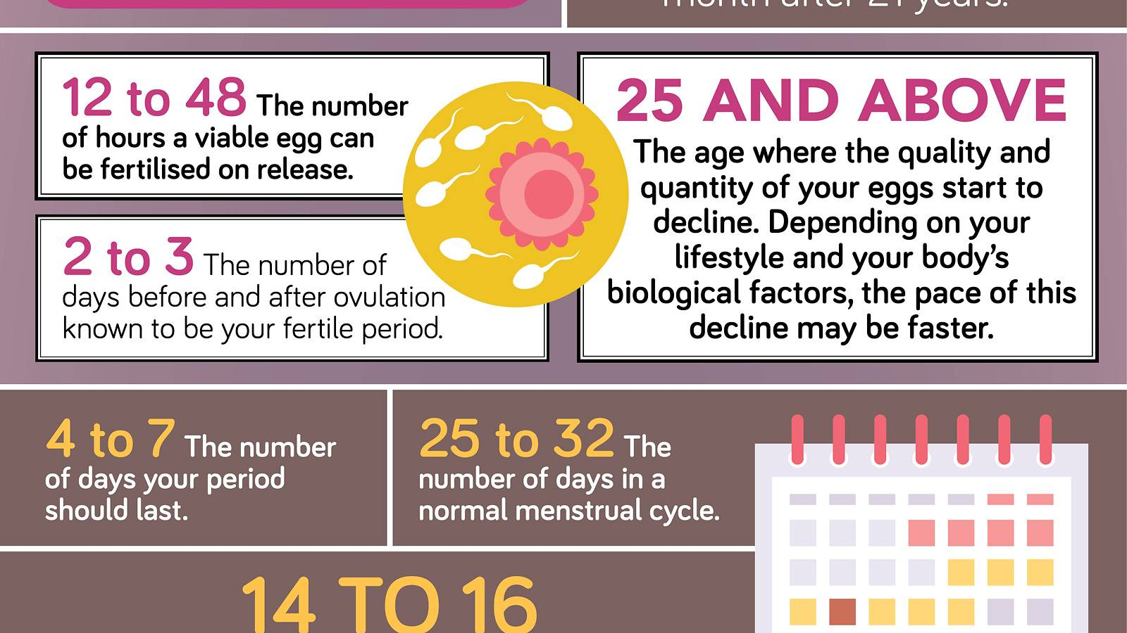 Conceiving-Your-fertility-by-the-numbers-infographics-3
