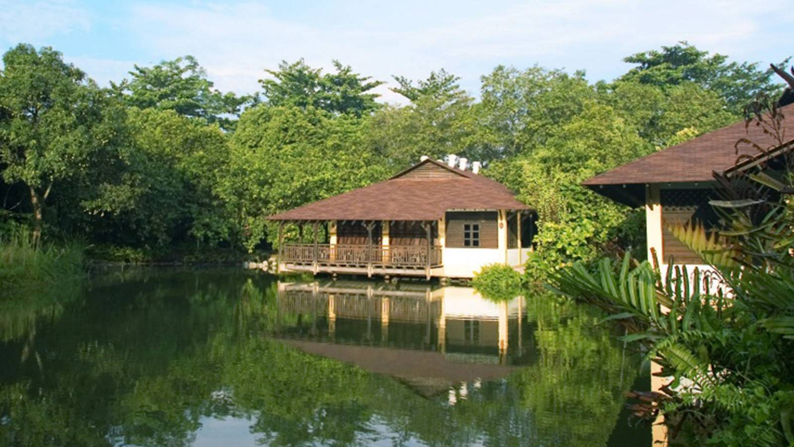 kids-50-awesome-things-to-do-this-school-holiday-SUNGEI-BULOH