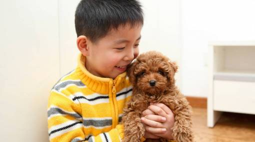 Kids--Getting-a-family-pet-6-facts-to-note