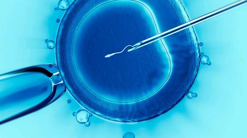 Conceiving-–-Facts-about-egg-and-sperm-donation-in-Singapore