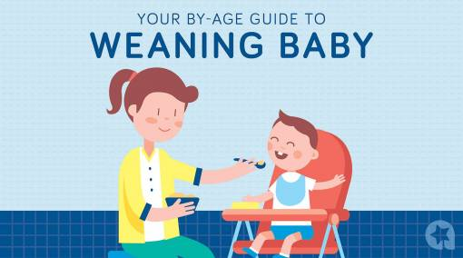 TOTS-(Friso)--Your-by-age-guide-to-weaning-baby-MAIN